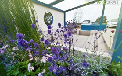 Think Blue - Bloom 2011