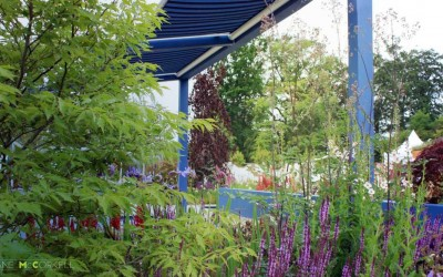 Think Blue - Bloom 2011 - border view