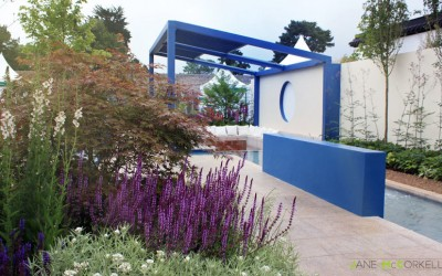 Think Blue - Bloom 2011 - view
