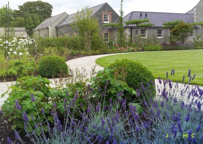 CountyDown lavender