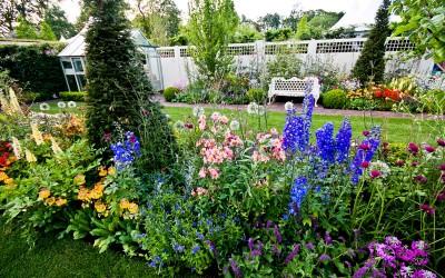 My Garden - Bloom 2012