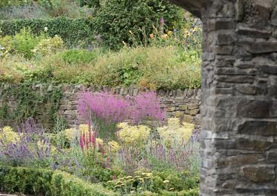 Kildare-Garden-8