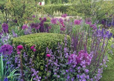 Jane McCorkell Bloom 2015 - borders