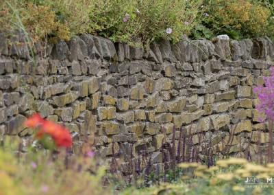 Kildare-Garden-3